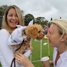 Mosman Pet's Day Out 2
