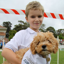 Mosman Pet's Day Out 5